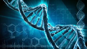 DNA tamir mekanizmaları