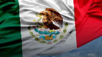 ABD-Meksika geriliminde son raunt