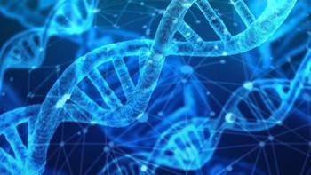 Makine öğrenmesi ve gen dizinleri arasındaki bağ