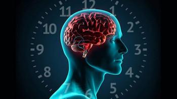 Uykuya dair bilimsel gerçekler