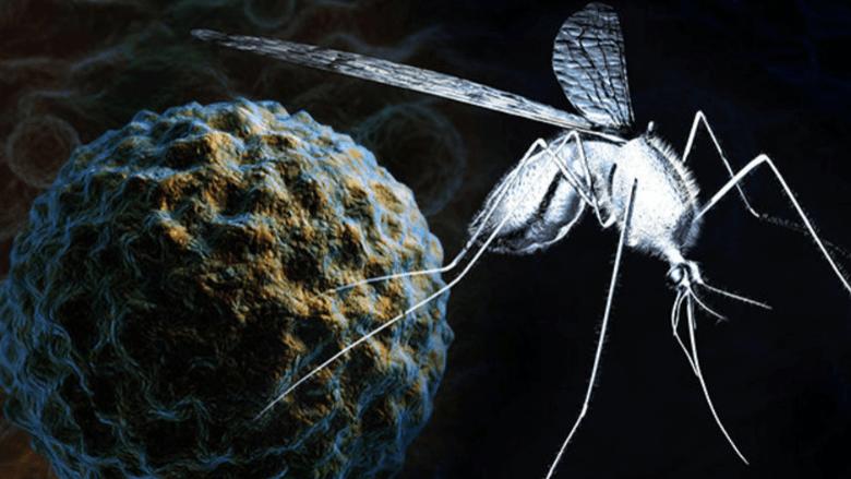 Batı Nil Virüsüne dikkat!