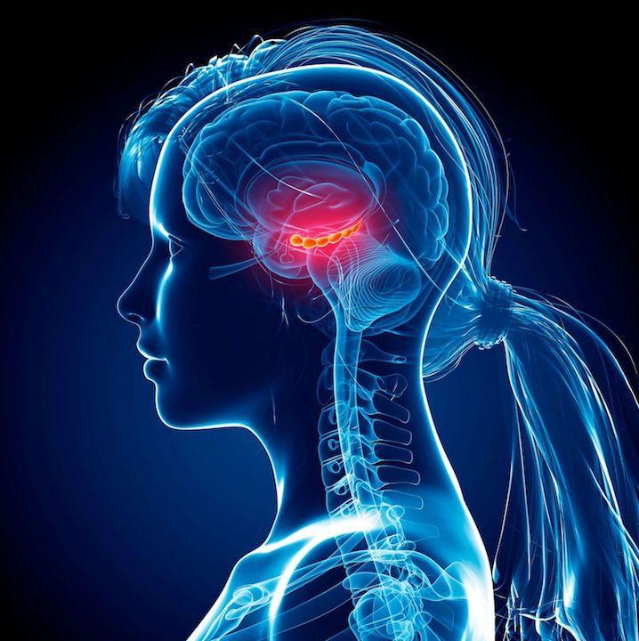 Beyin sinyalleriyle cihaz kontrolü artık mümkün - Sayfa 1