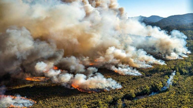 Avustralya'da çıkan yangının sebebi ne?